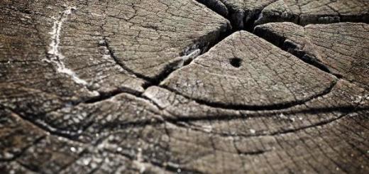 split-pine