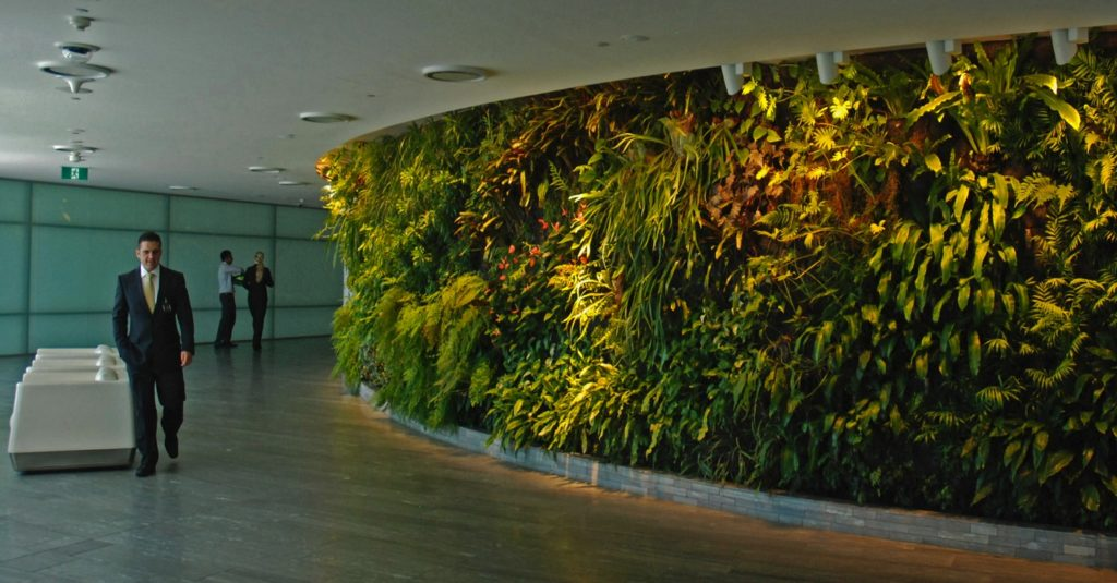 Office-interior-vertical-garden