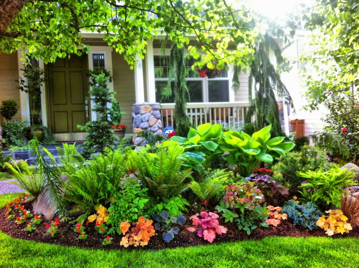 15 best smelling outdoor plants for your garden blogrope for Best home garden design